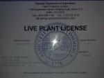 plant license